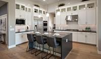 Starling-Kitchen-1