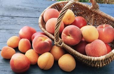 peach-festival