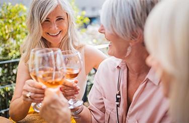 4499_Women Clinking Wine Glasses