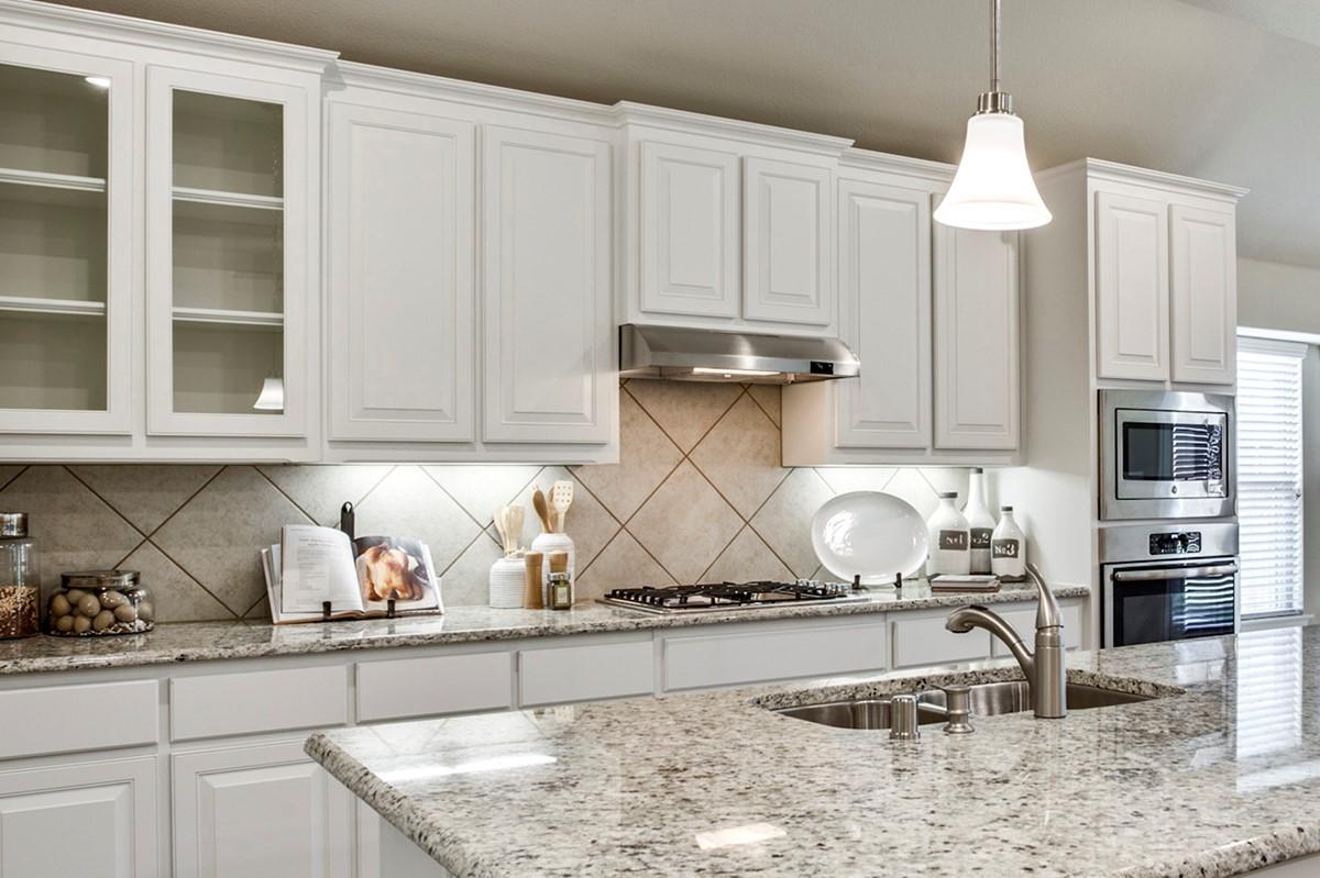 Walden V kitchen