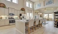 Kitchen3_Ferdossa 24438 IMG 09_1c