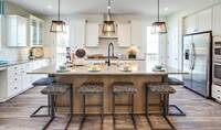 79456_Highland Park_Garrett I_Gourmet Rear Kitchen